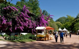Food Tour at Caldas da Rainhaby GoCaldas