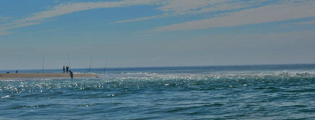 Foz do Arelho Pescar