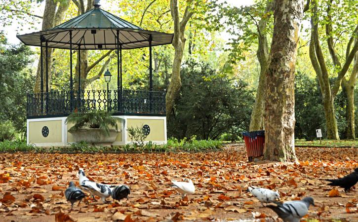 10 sítios que tens de conhecer em Caldas da Rainha, Parque D. Carlos I, Gocaldas, o teu Guia Turístico Local