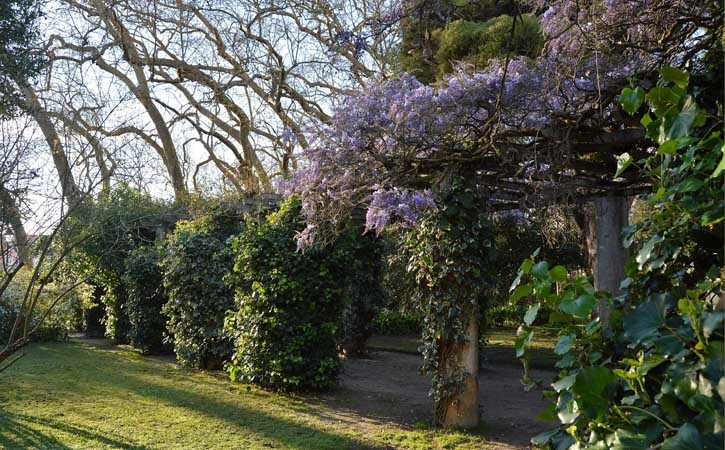 Visitar Caldas da Rainha, Parque D. Carlos I, em Caldas da Rainha