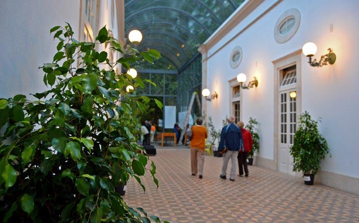 Céu de Vidro, Parque D. Carlos I, Caldas da Rainha, Gocaldas, o teu Guia Turístico Local