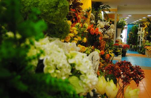 Interior da Loja Flor Viva no Centro das Caldas da Rainha