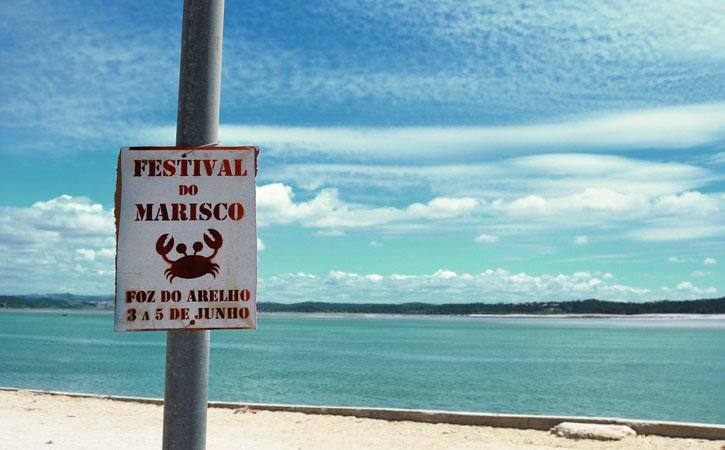 Eventos Anuais nas Caldas da Rainha, V Festival de Marisco da Foz do Arelho, Lagoa de Óbidos, Caldas da Rainha, Gocaldas, o teu Guia Turístico Local