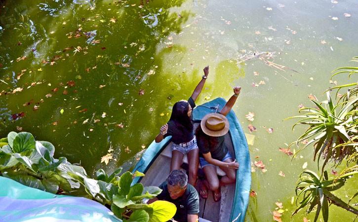 Para os Mais Pequenos nas Caldas da Rainha Grande Regata, lago Parque D. Carlos I, Gocaldas, o teu Guia Turístico Local