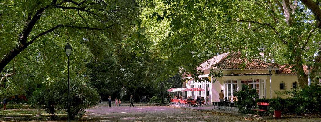 Cafés Mais Antigos da Cidade
