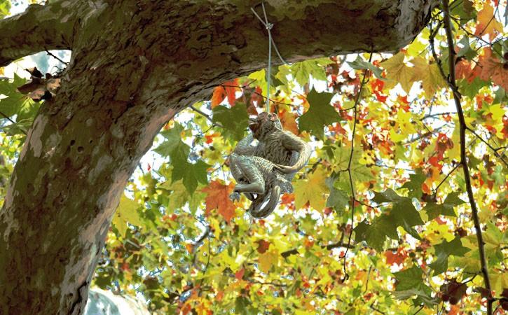 Rota Bordaliana, a Aldeia dos Macacos, Caldas da Rainha