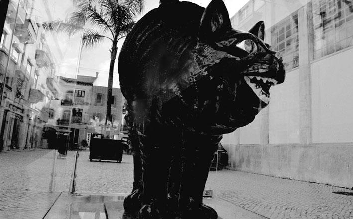 Rota Bordaliana, o Gato Assanhado, Caldas da Rainha
