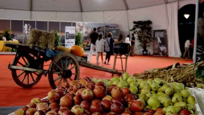 Agosto – Frutos 2017 – Feira Nacional de Hortofruticultura