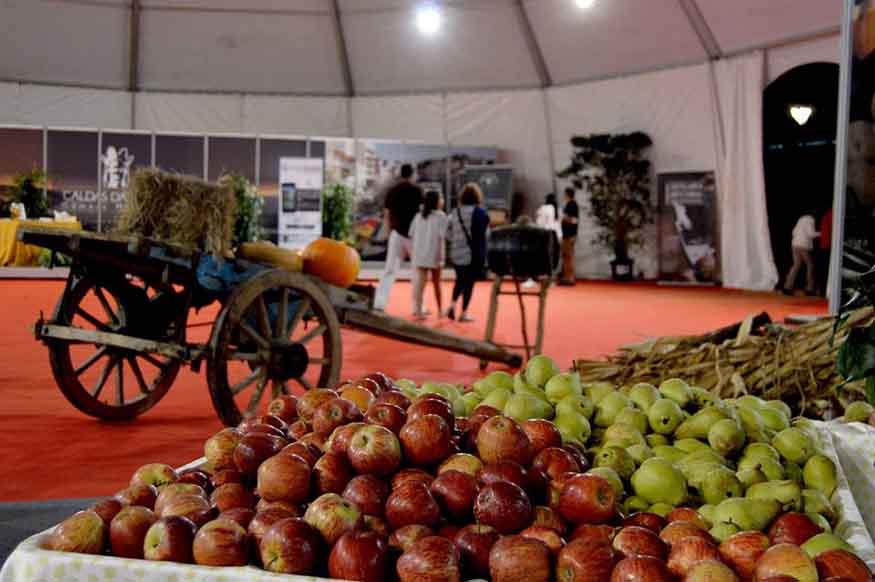Feira dos Frutos em Caldas da Rainha GoCaldas Caldas da Rainha - O Guia Turístico da Cidade