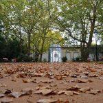 Céu de Vidro, Caldas da Rainha, Parque D. Carlos I, Gocaldas, o teu Guia Turístico Local