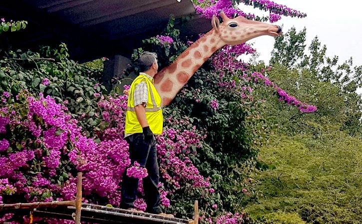 Carlos Oliveira - Escultor e Ceramista, Caldas da Rainha, escultura de girafa, Gocaldas, o teu Guia Turístico Local