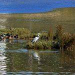 Obidos Lagoon in Foz do Arelho