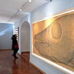 Museu do Hospital e das Caldas, Caldas da Rainha,exposição temporária, Gocaldas, o teu Guia Turístico Local