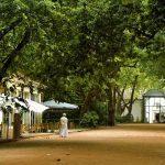 Parque D. Carlos I, cafés, Caldas da Rainha, , Gocaldas, o teu Guia Turístico Local