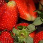 Praça da Fruta, morangos, Gocaldas, o teu Guia Turístico Local