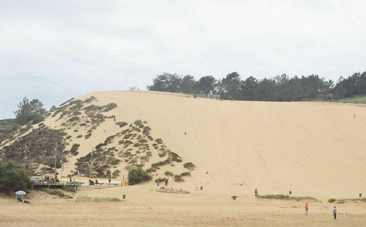 Salir do Porto Sand Dune