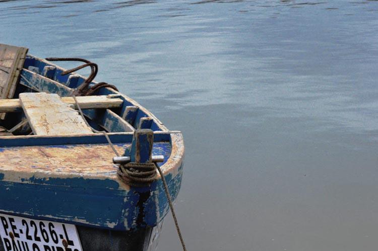 Bateiras, os barcos ondulantes da lagoa, Caldas da Rainha, GoCaldas o Guia Oficial da cidade