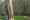 As 6 coisas que precisas de fazer em Caldas da Rainha este Inverno, Parque D. Carlos I, GoCaldas Guia Turístico de Caldas da Rainha