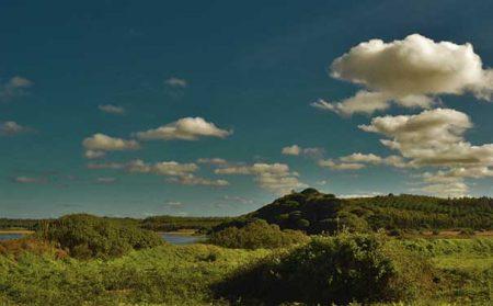 Tarde com Céu nublado no campo em Caldas da Rainha