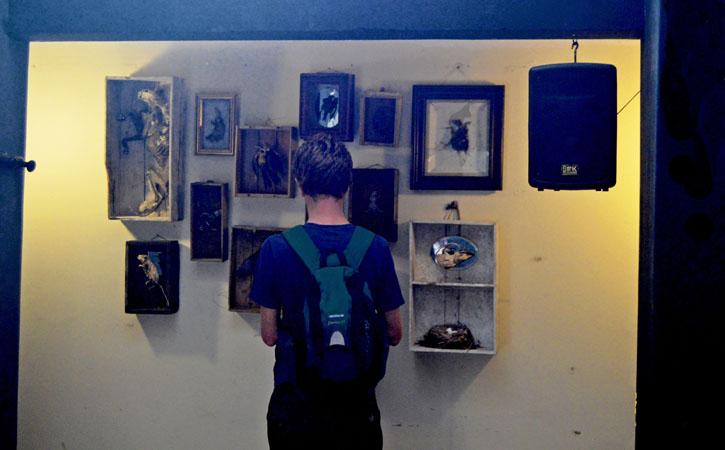 Caldas late Night, exhibitions, Gocaldas, your Local Touristic Guide